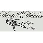 Byron Bay Ocean Swim Classic Logo